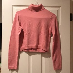 Aritzia cropped turtleneck